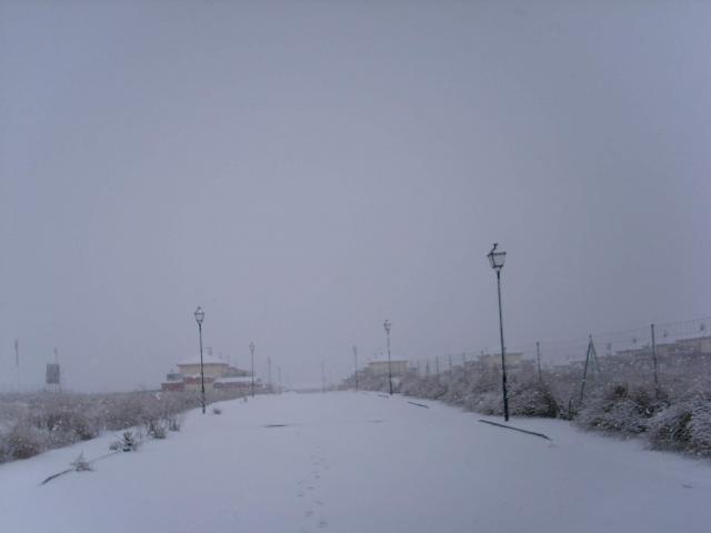 nevada de diciembre del 2008