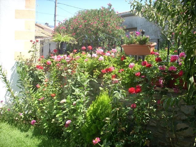Jardins pequeno fotos design de imagem for Decorar mi jardin pequeno
