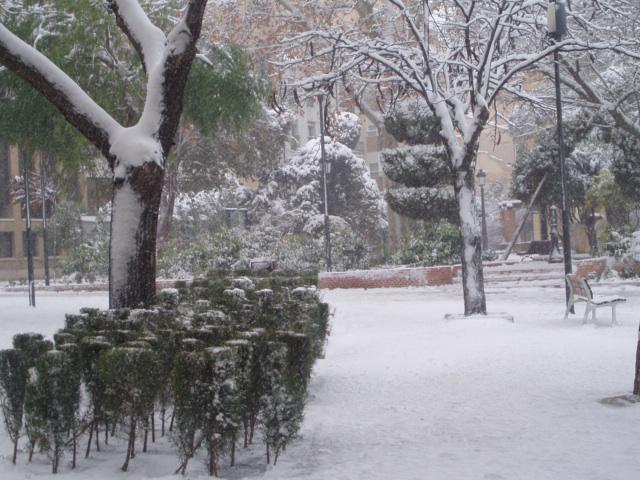 Yecla nevada yecla - Paginas amarillas murcia ...