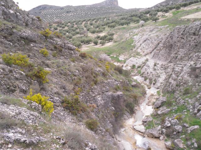 rio del tejal