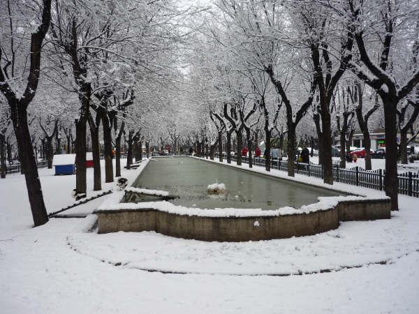 Pinto nevado pinto - Fotos de pinto madrid ...