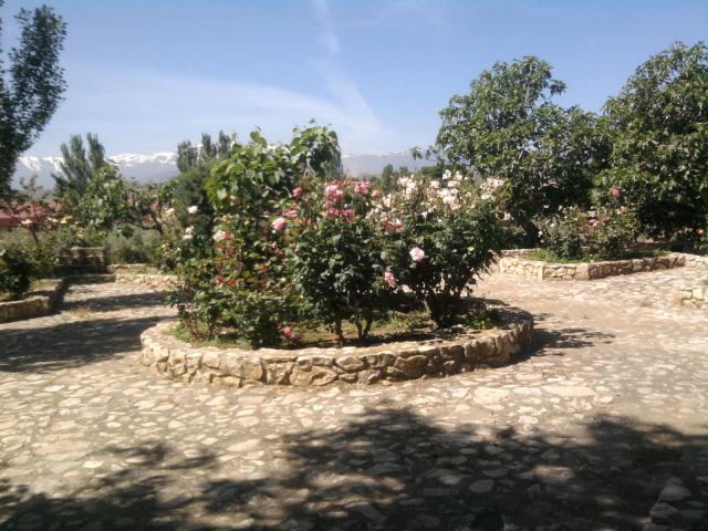 Jard n residencia ancianos for Ciudad jardin granada