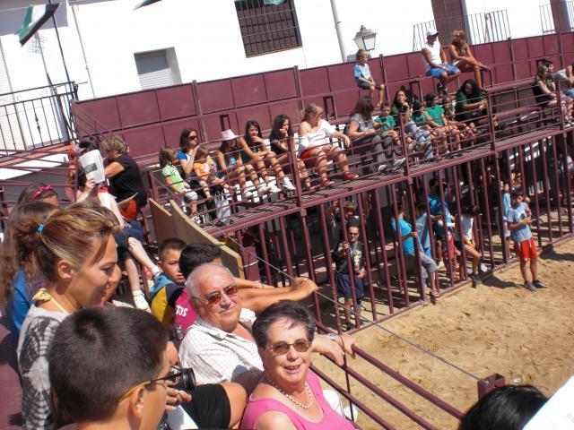 Los toros - Casas de millan fotos ...