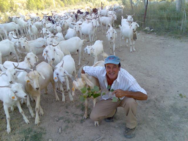 Ram n y sus cabras - Paginas amarillas albacete ...