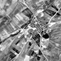 Lomoviejo 1957