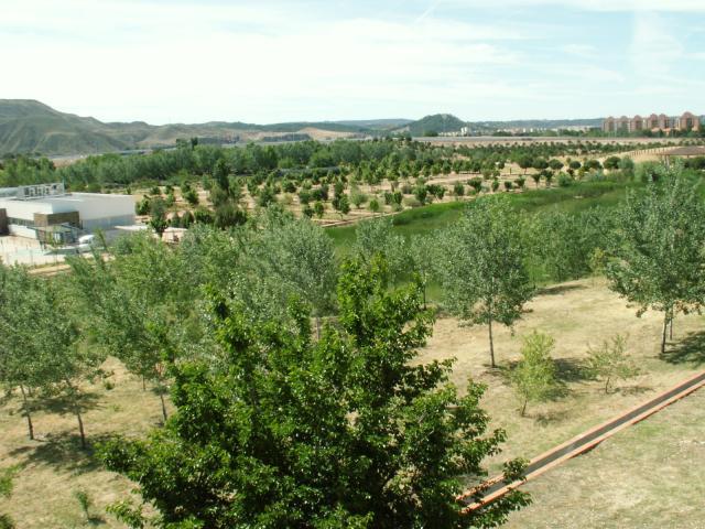 Jardin botanico de alcala for Cementerio jardin de alcala de henares