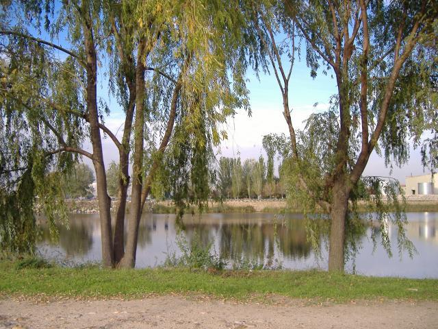 De paseo por el lago - Inmobiliaria velilla de san antonio ...