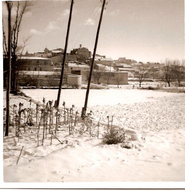 Torre y nieva - Paginas amarillas albacete ...