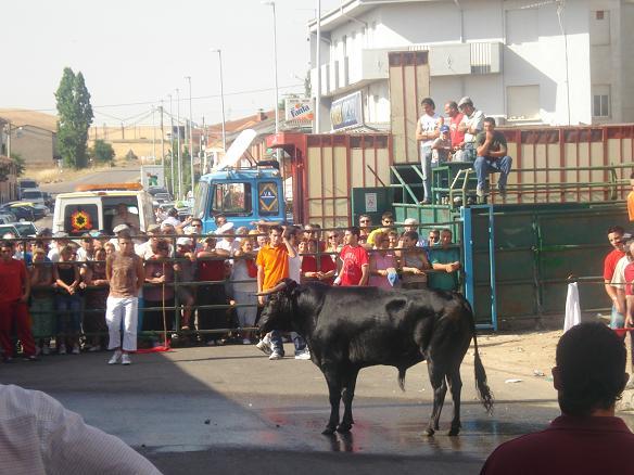la boveda de toro: