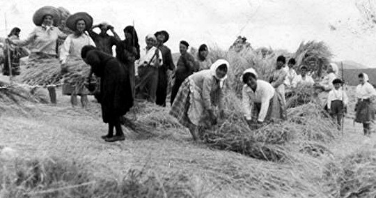 La Maja del trigo