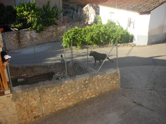 los toros de 2008